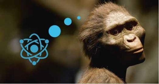 Affe und Atom
