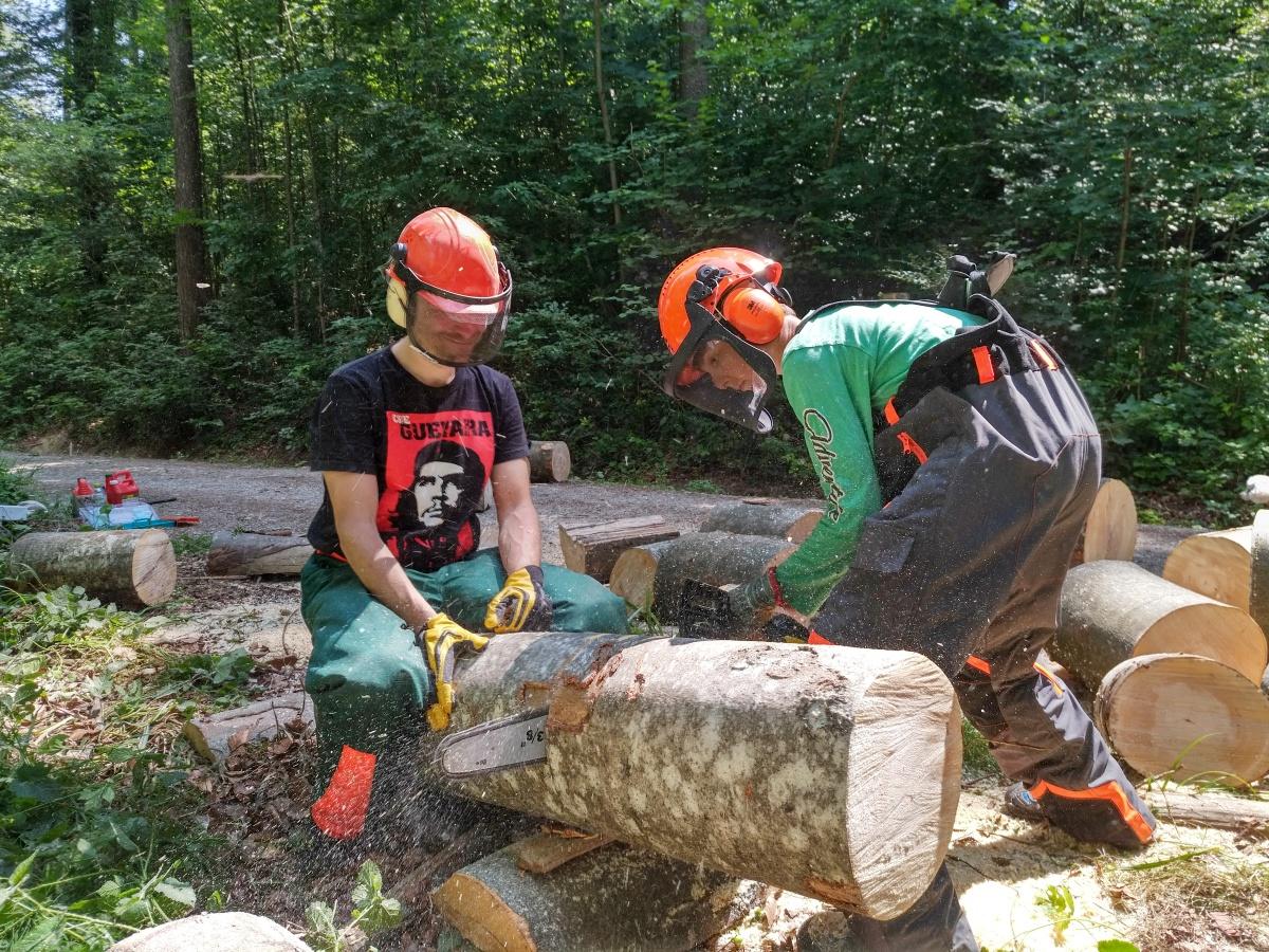 Holzeinsatz zugunsten der StiftungRotenbirben