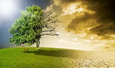 Vortrag: Der Klimawandel stellt sichvor