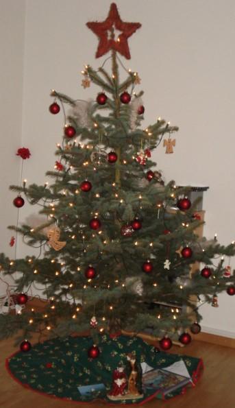 Was lege ich 2019 unter denWeihnachtsbaum?